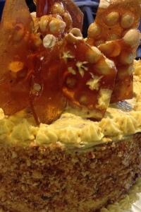 Almond-Hazelnut-Praline-Cake